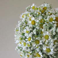 ::Bridal bouquet with gypsophylle & tanacetum